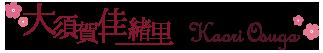 O60 ONYX ブラック 【レディース】【財布】 フルラ FURLA 財布 BABYLON シーバイクロエ バビロン 2つ折り長財布 PS12 871069 B30 ブランド